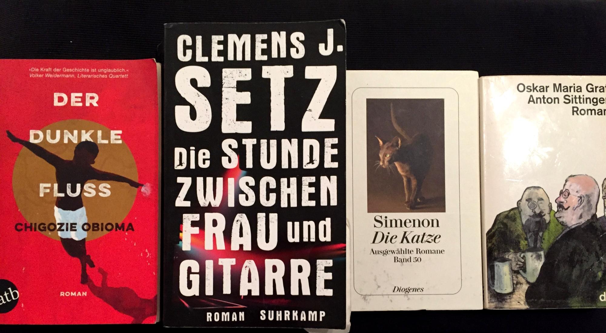 Bemerkenswerte Bücher 2 / 2017